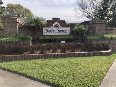 HIDDEN SPRINGS HOMES FOR SALE 32819 | 32836 | Wendy Morris Realty Dr Phillips